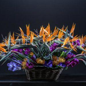 Fleuriste à Montélimar dans la Drôme